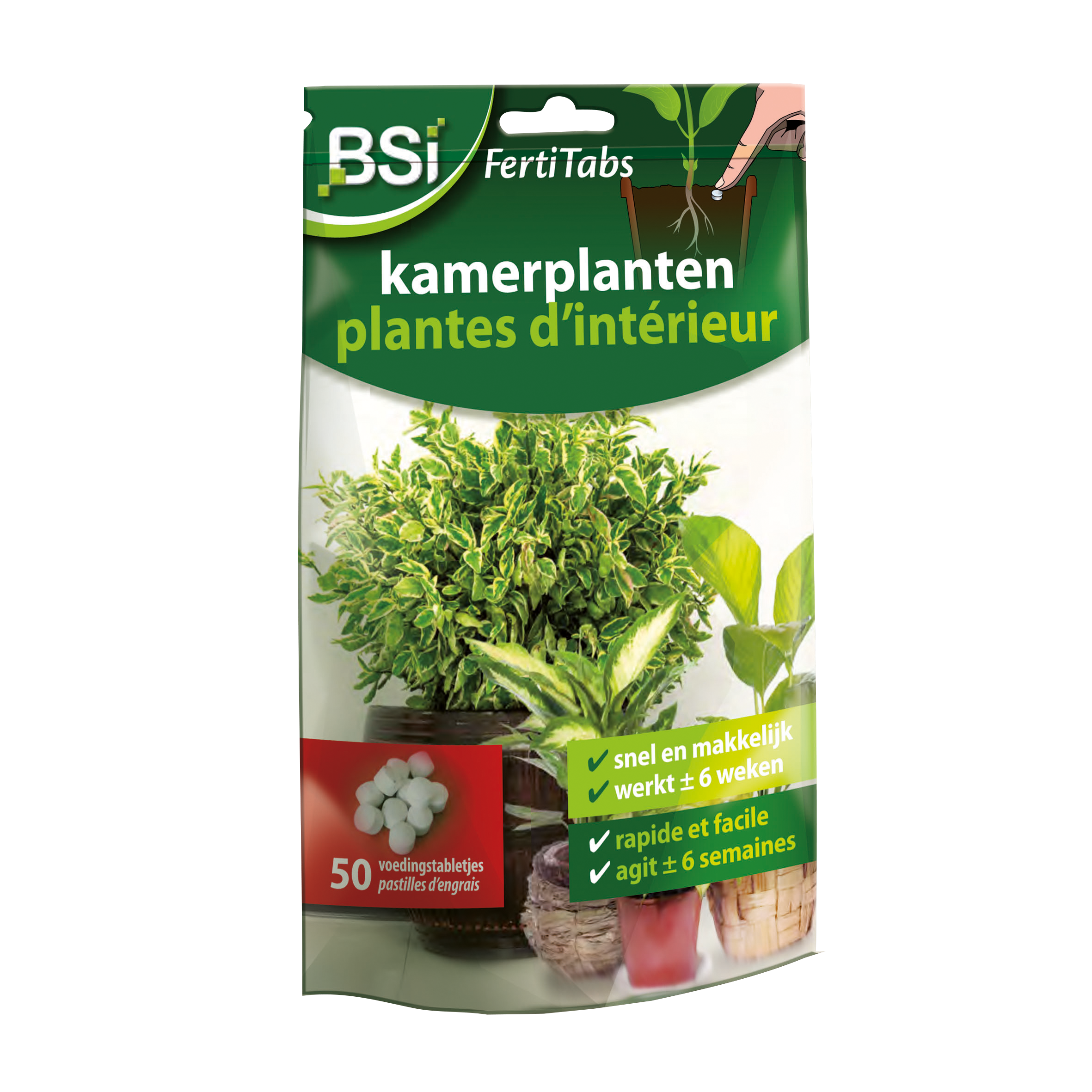 Fertitabs Kamerplanten 40 g image